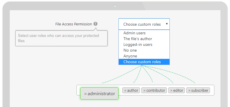 File Access Permission with Custom User Roles