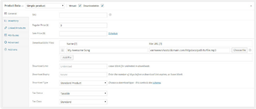 Add Virtual and Downloadable Products to your WooCommerce Store Product Data