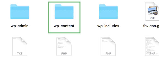 Basic Guide to WordPress File Structures and Database content