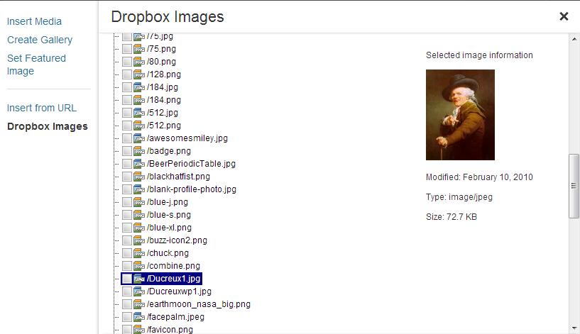 insert dropbox image