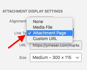 pda-attachment-url