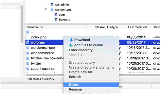delete-plugin-folder